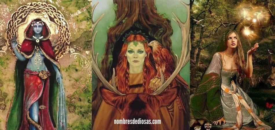 deidades celtas